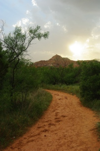 """Palo duro"" is Spanish for ""hard wood"" in reference to the Rocky Mountain Juniper trees seen throughout the canyon."