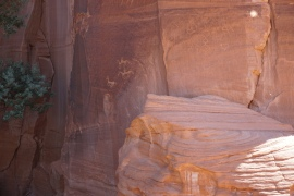 Petroglyphs (etchings) and pictographs (paintings) at Newspaper Rock